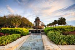 Свет утра на SC Чарлстона фонтана ананаса Стоковые Изображения RF