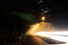 Свет через тоннель дерева ночи Стоковые Изображения RF