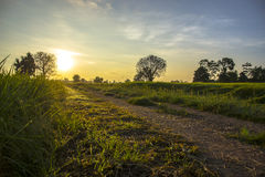 светлый восход солнца Стоковое фото RF