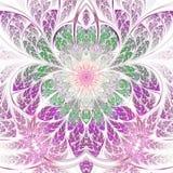 Светлый и красочный цветок фрактали Стоковые Фото