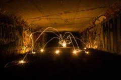 Светлый паук Стоковое Фото