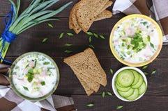 Светлый суп диеты с свежими огурцами, закалёнными с югуртом в керамических шарах на темной деревянной предпосылке Традиционное ру стоковое фото rf