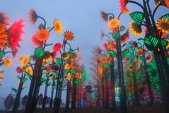 Светлый фестиваль приведенный Стоковые Изображения RF