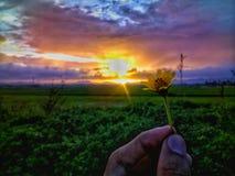 Свет Стоковая Фотография RF
