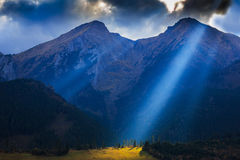 свет Стоковое Изображение