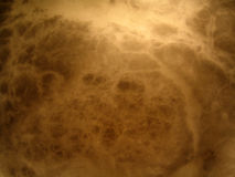 свет Стоковые Фото
