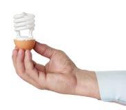 свет eggshell шарика Стоковые Изображения