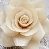 Свеча белой розы Стоковые Фотографии RF