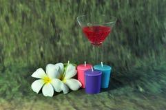 Свеча и одичалое Стоковая Фотография RF