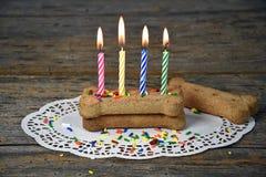 Свеча дня рождения на косточке собаки Стоковые Фото