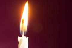 Свеча дня рождения на малиновой предпосылке Стоковое фото RF