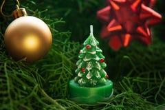 Свеча рождественской елки на ветвях ели стоковые фотографии rf