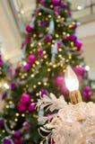 Свеча рождества с рождественской елкой Стоковые Фото