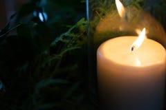 Свеча рядом с листьями с отражением стоковые фото