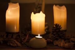 Свечи и продукты осени природы стоковые фото
