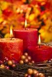 Свечи осени стоковое фото