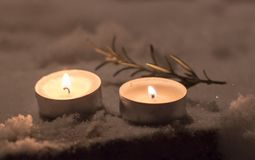 2 свечи с розмариновым маслом Стоковые Изображения