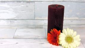 Свечка с цветками Стоковые Изображения