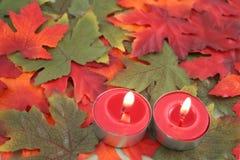 свечки листьев Стоковые Изображения RF