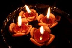 свечки плавать подняли Стоковая Фотография RF