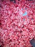 свинина Стоковая Фотография RF