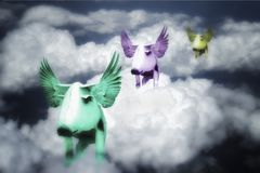 Свиньи летают стоковые изображения