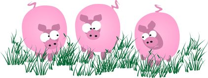 свиньи Стоковое Изображение RF