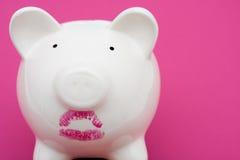 свинья губной помады все еще нося Стоковое Фото