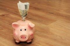 Свинья денег Стоковое фото RF