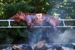 Свинья зажаренная в духовке на пожаре снаружи Стоковое Изображение RF