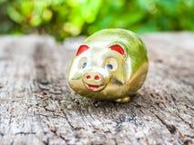 Свинья золота Стоковые Фото