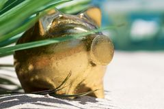 Свинья копилки золота на песчаном пляже лето seashells песка рамки принципиальной схемы предпосылки Путешествия Стоковые Изображения