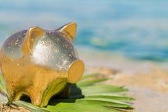 Свинья копилки золота на песчаном пляже лето seashells песка рамки принципиальной схемы предпосылки Путешествия Стоковая Фотография RF