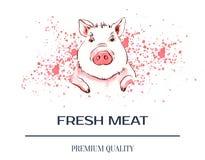 Свинья на пятнах aquarele Акварель животноводческих ферм плаката иллюстрация вектора