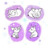 Свинья Нового Года жизнерадостная иллюстрация штока