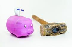 Свинья при кредитки евро смотря кувалду Стоковые Фото