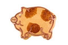 Свинья пряника Стоковые Фото
