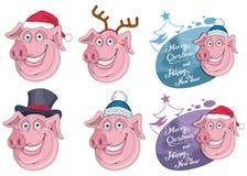 Свинья рождества изолированная на белой предпосылке Праздник ` s Нового Года Свинья рождества Голова характера зимы Смешной харак стоковая фотография