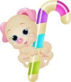Свинья тросточки конфеты Стоковая Фотография