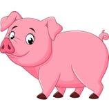 Свинья шаржа счастливая изолированная на белой предпосылке Стоковое Изображение