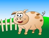 свинья шаржа Стоковые Фотографии RF