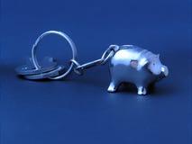 свинья ярлыка ключей стоковые изображения