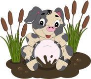 Свинья Mudhole Стоковое Изображение