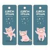Свинья template-04 стоковые изображения rf