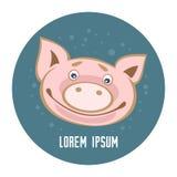 Свинья template-11 стоковая фотография