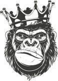 Свирепая голова гориллы иллюстрация штока
