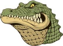 Свирепая голова аллигатора иллюстрация штока