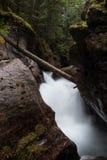 Свирепствуя водопад Стоковая Фотография RF