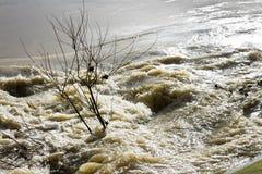 Свирепствуя воды и тёмный Стоковые Фото