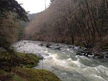 свирепствуя река Стоковые Фотографии RF